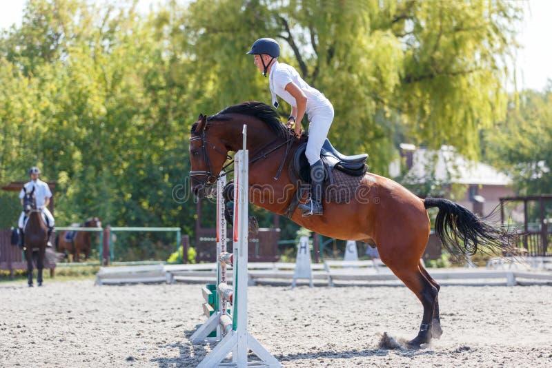 Верховая лошадь молодого человека на событии выставки скача стоковые изображения rf