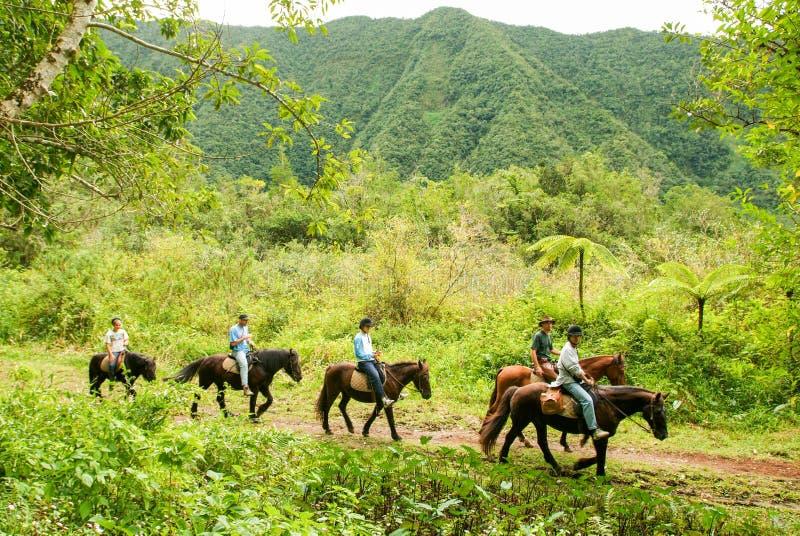 Верховые лошади людей на Grang Etang на Ла Острове Реюньон стоковое изображение