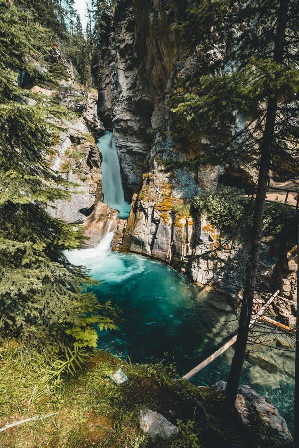 Верхушка падает водопад каньона Johnston, Banff Nationalpark Канада Альберта стоковое фото rf