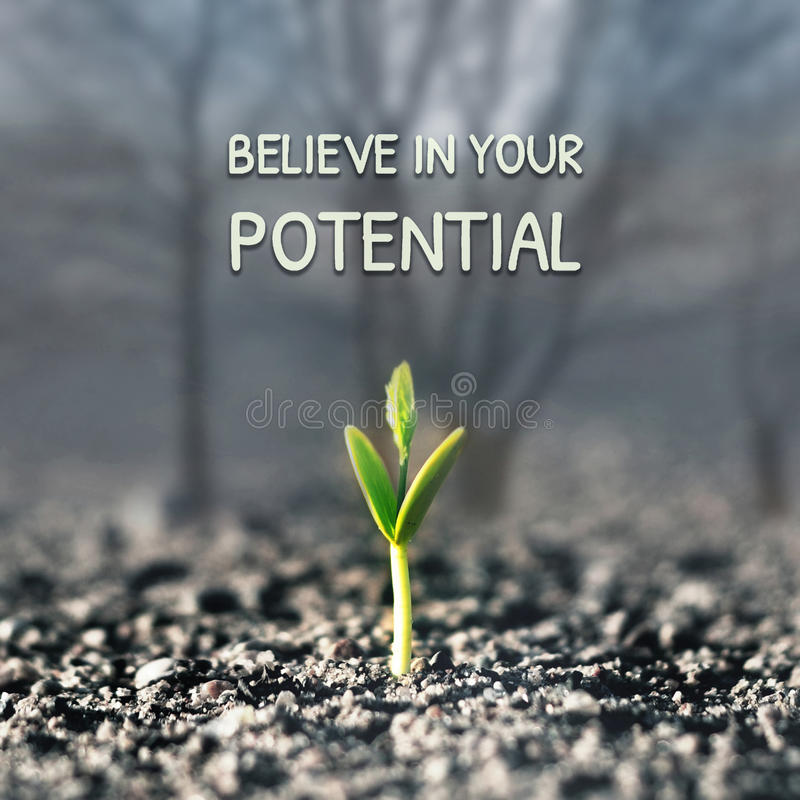 Верьте в вашем потенциале стоковое фото rf