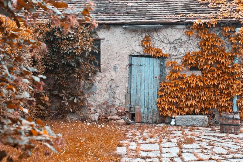 дверь деревенская стоковая фотография rf