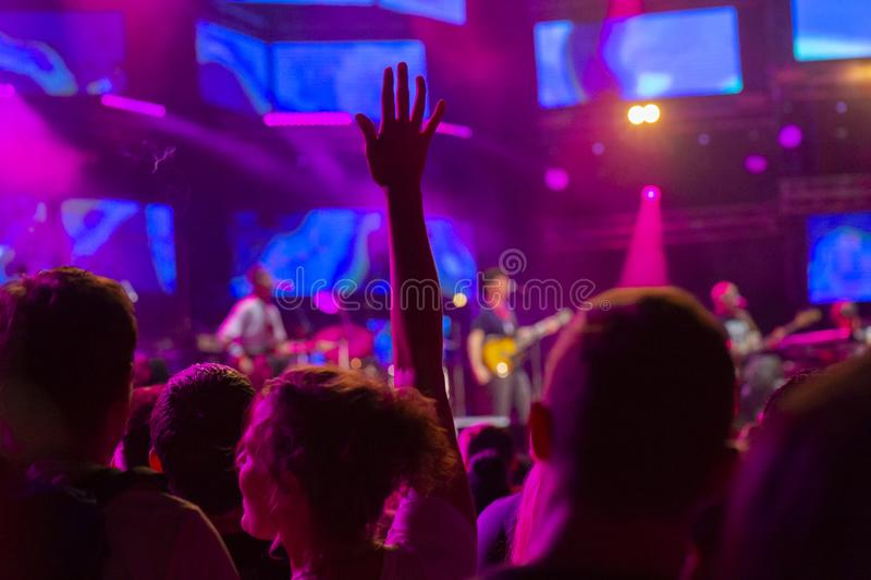 Веселя толпа на рок-концерте стоковое изображение rf
