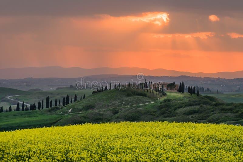 Весеннее время в Тоскане на заходе солнца стоковое фото