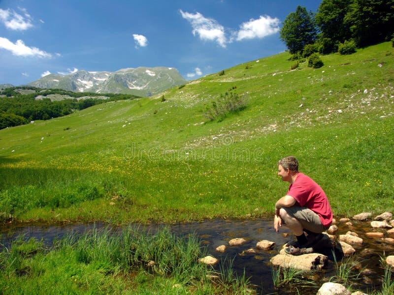 весеннее время ландшафта стоковое изображение