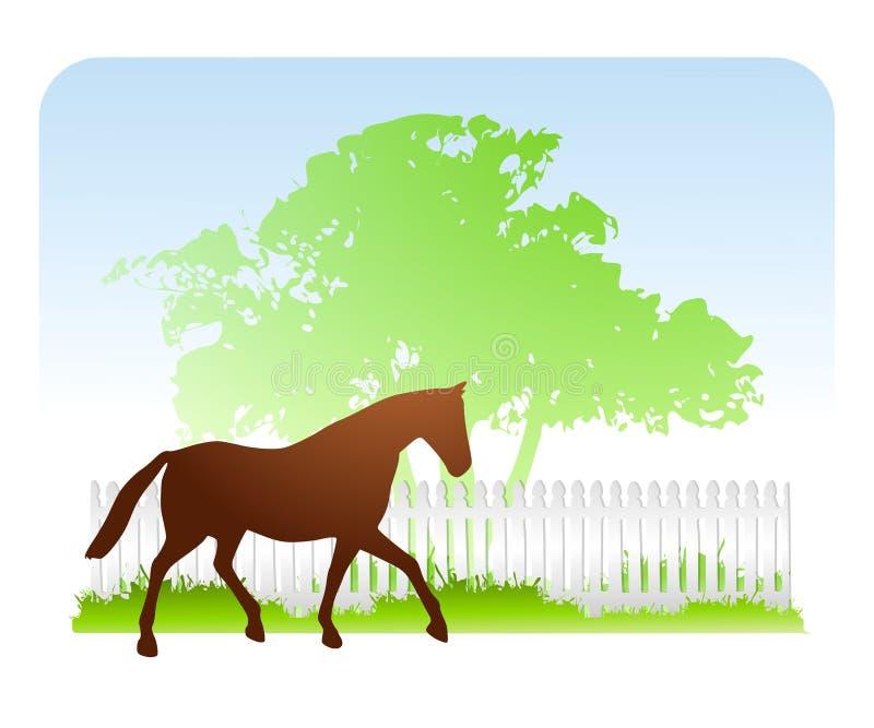 весеннее время лошади фермы иллюстрация штока