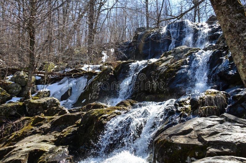 Весеннее время на темных неубедительных падениях, водопад расположенный внутри национальный парк Shenandoah в Вирджинии вдоль при стоковое изображение