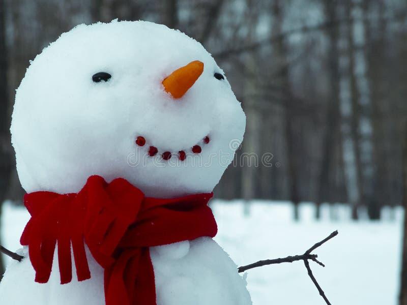 Веселый снеговик стоковая фотография rf