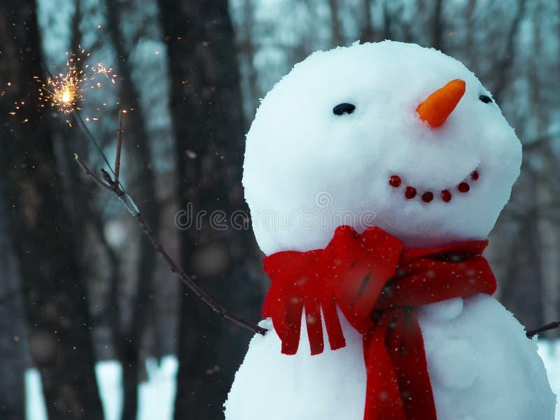 Веселый снеговик стоковое изображение