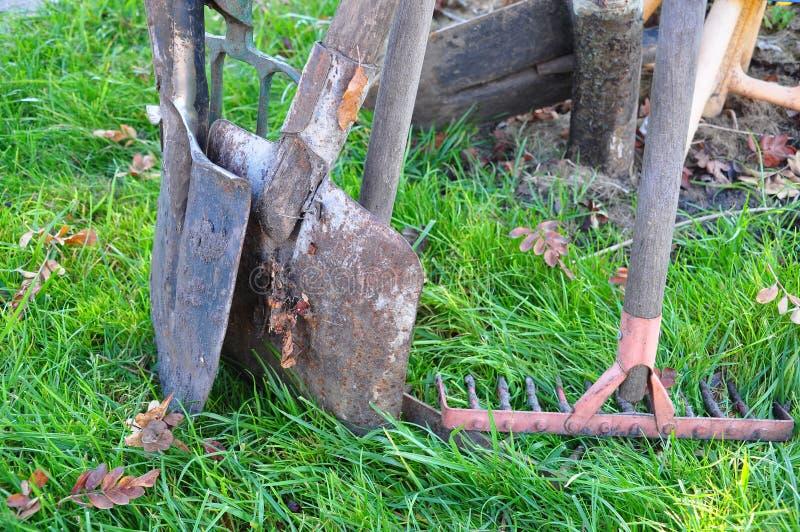 весла травы вилки стоковые фото