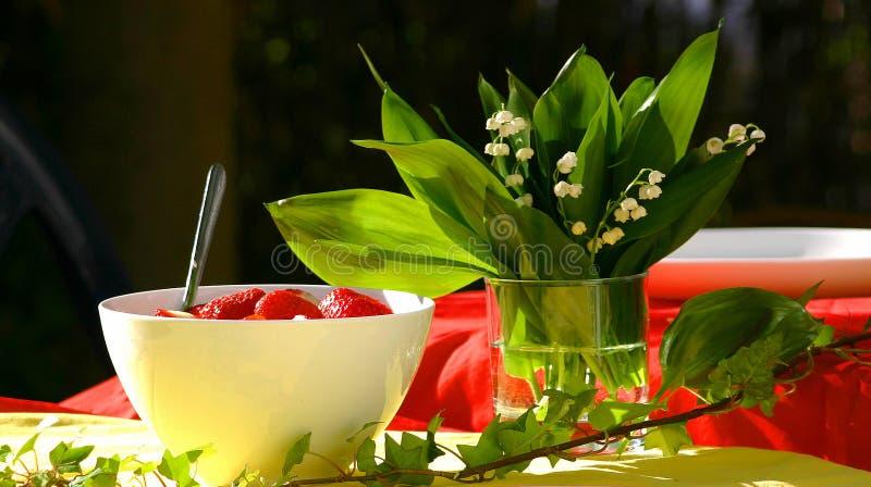 весна вечера стоковое фото