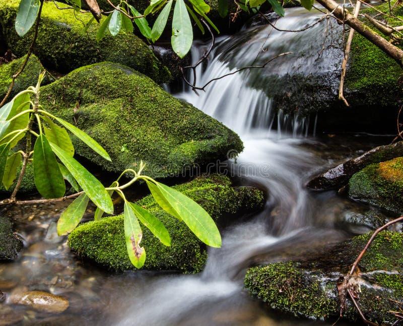 Весна в больших закоптелых горах стоковые изображения rf