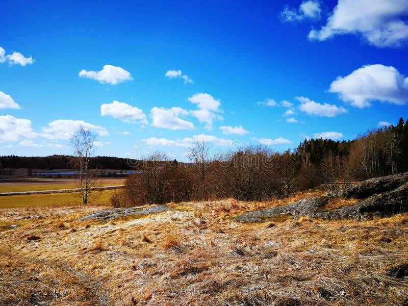 Весна в Kuusisto стоковые фотографии rf