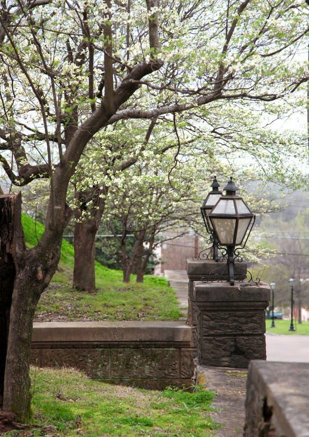 Весна в Natchez Миссиссипи стоковые изображения