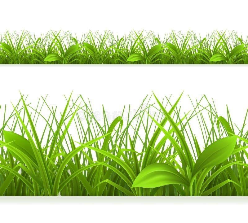 весна зеленого цвета травы бесплатная иллюстрация