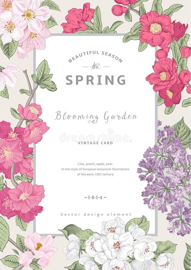Весна карточки винтажного вектора вертикальная бесплатная иллюстрация