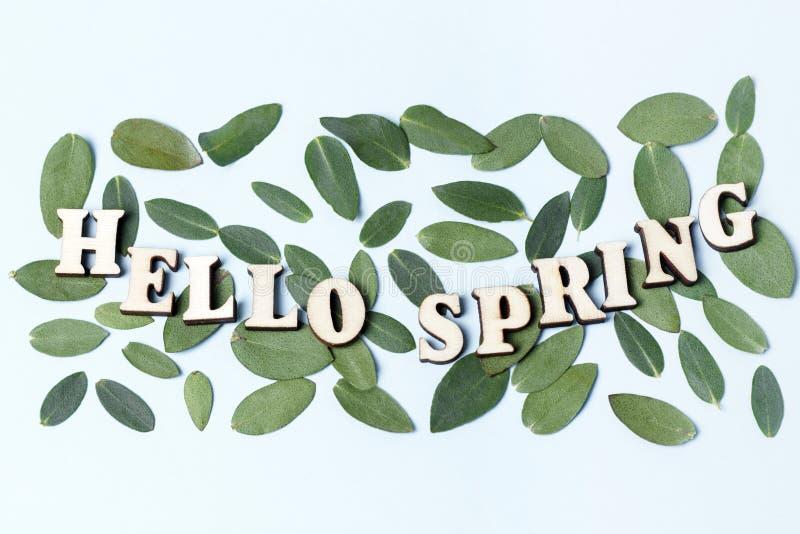 Весна надписи здравствуйте на голубой предпосылке, текстура зеленых листьев стоковые фото
