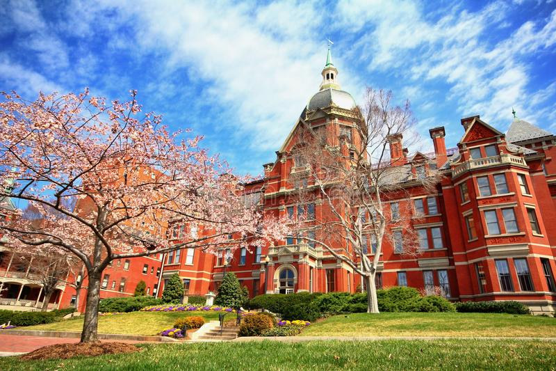 Весна на Johns Hopkins стоковое фото