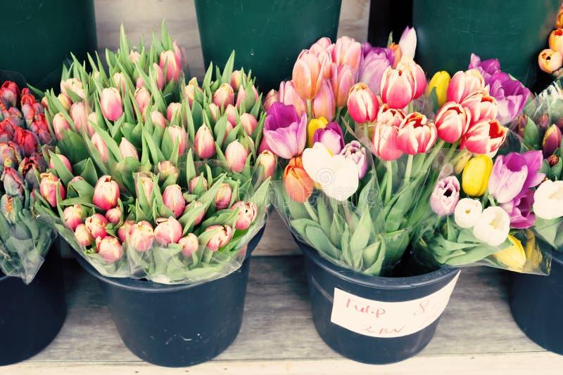 Весна Нью-Йорка стоковое фото