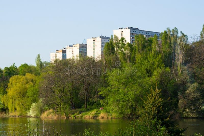Весна парка города стоковая фотография