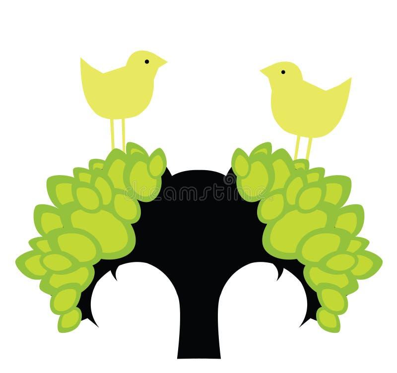 весна птиц стоковые фотографии rf