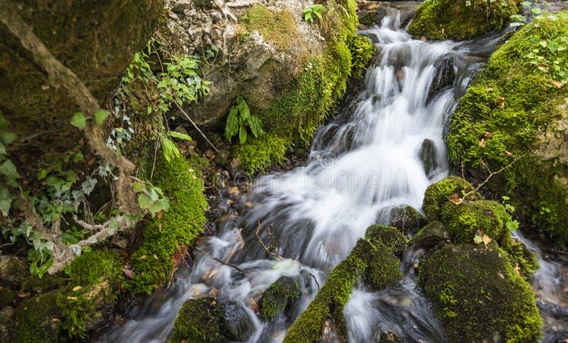 Весна холодной воды города Tepelena стоковая фотография rf