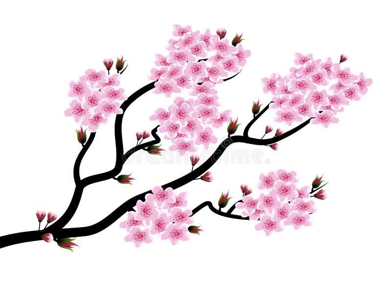весна цветеня бесплатная иллюстрация