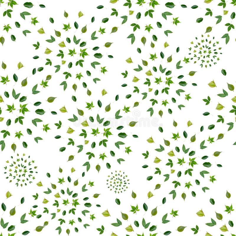 Весна цветет безшовная картина предпосылки иллюстрация вектора