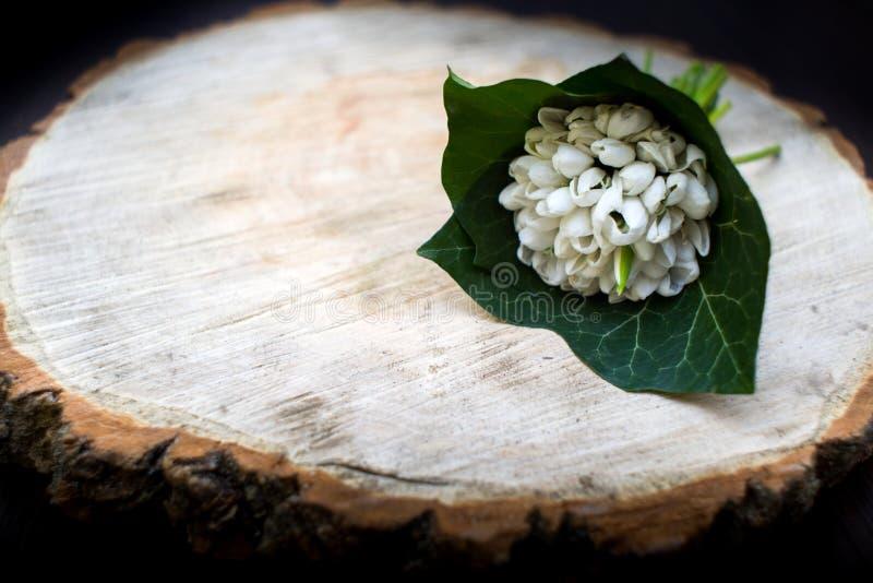 Весна цветет, день ` s женщин 8-ое марта snowdrops стоковые фотографии rf