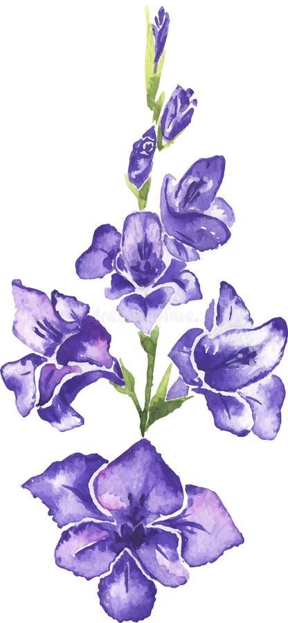 Весна цветет изолированная акварель бесплатная иллюстрация