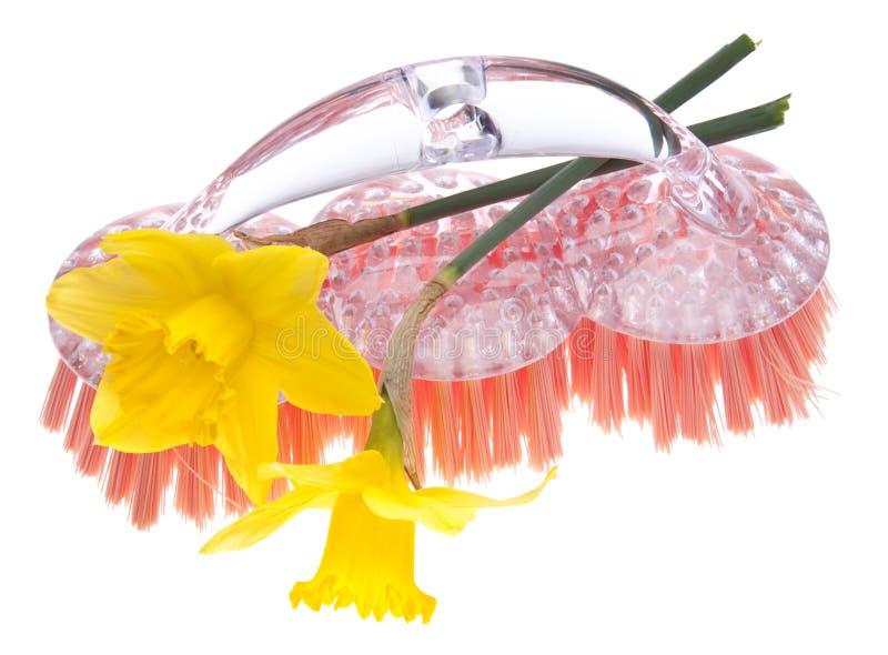 весна чистки Стоковое Изображение