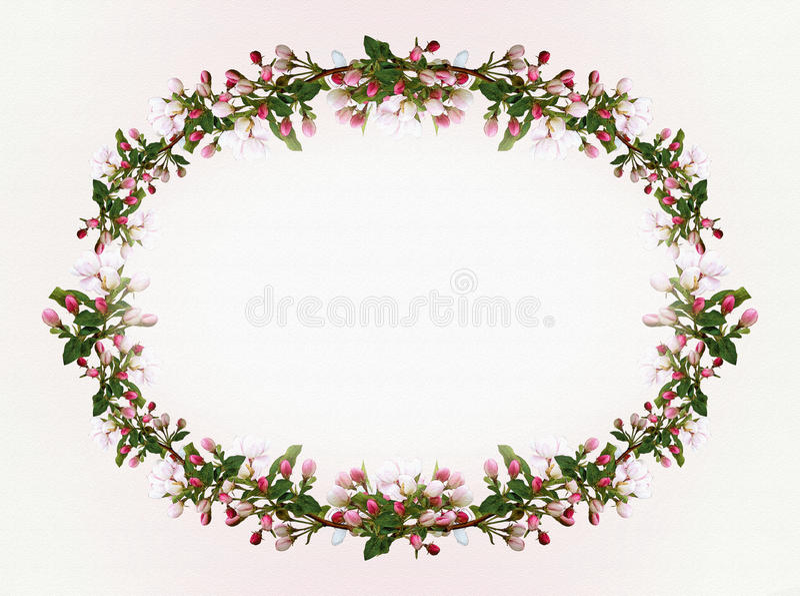 Весна Яблоко цветет овальная предпосылка рамки иллюстрация штока