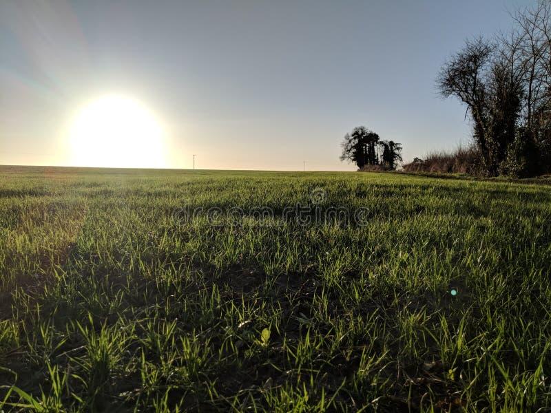 Весна 2018 Devizes восхода солнца стоковая фотография