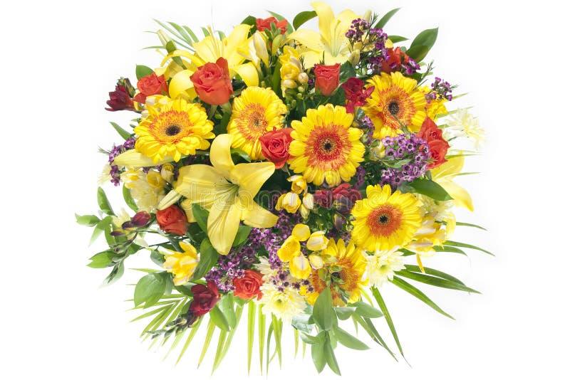 весна lush цветков пука цветастая стоковое изображение rf