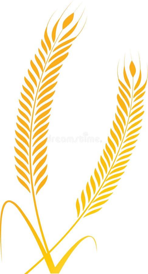 Весны пшеницы бесплатная иллюстрация