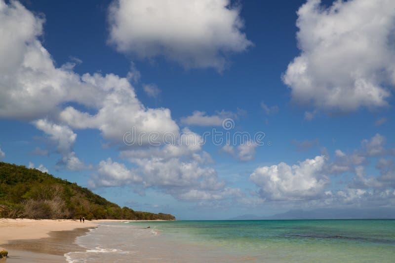 Вест-Инди, французские Вест-Индии, остров Гваделупы, стоковое изображение rf