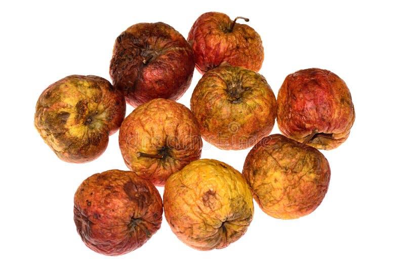Весьма био яблоки стоковые изображения