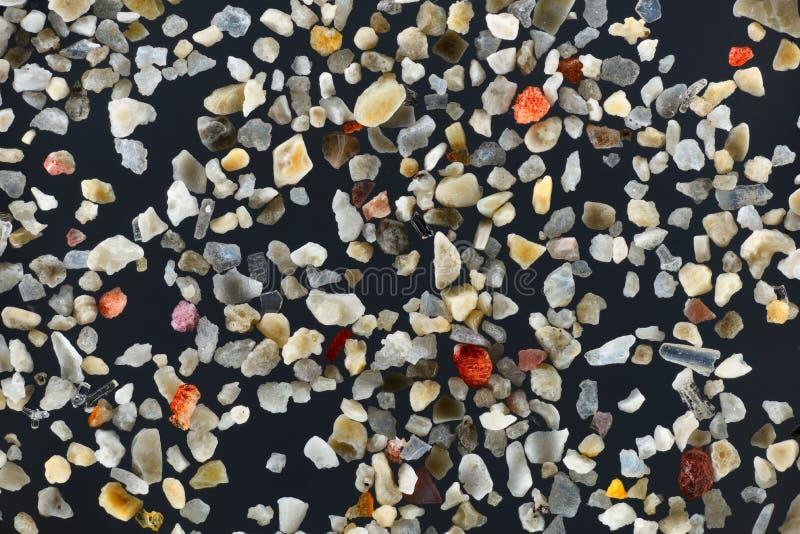 Весьма конец-вверх зерен песка коралла стоковые изображения rf
