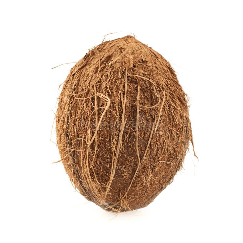 Весь изолированный плодоовощ кокоса стоковое фото rf
