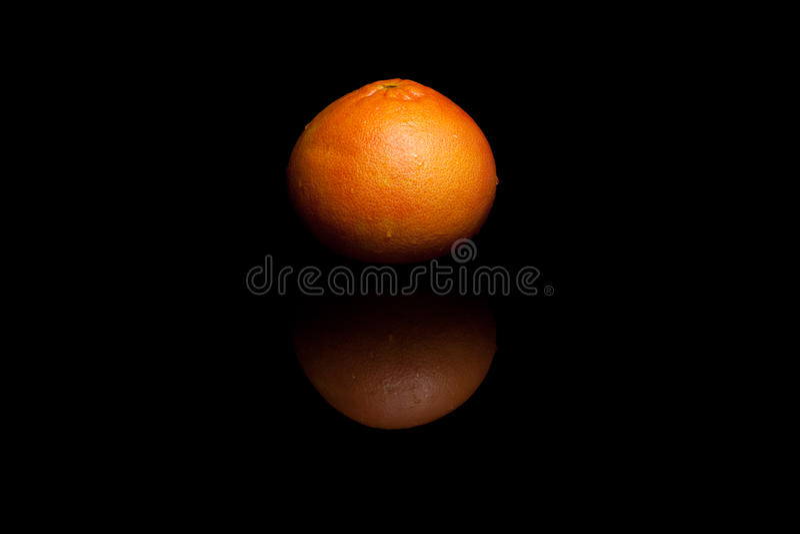 Весь красный грейпфрут изолированный на черной предпосылке стоковое фото rf