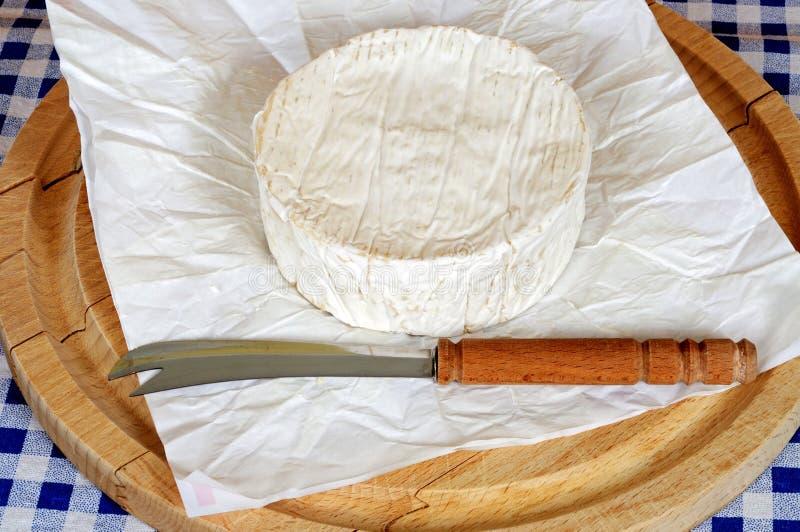 Весь французский сыр камамбера. стоковое фото
