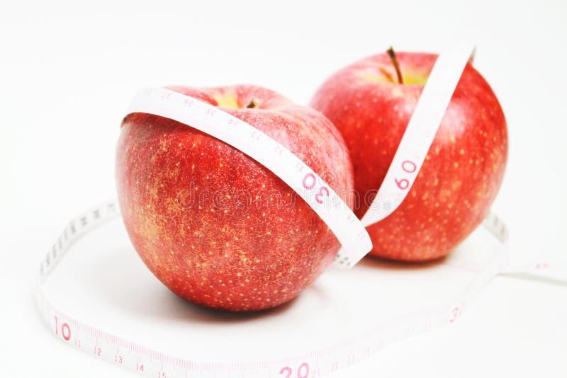 вес потери принципиальной схемы стоковые изображения