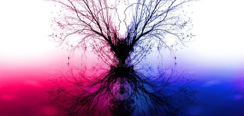 Ветви дерева в форме силуэтов влюбленныхся пар стоковые фотографии rf