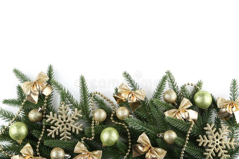 Ветви ели рождества стоковое фото