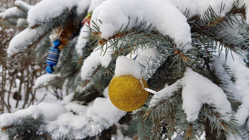 Ветви ели с сочными иглами покрытыми пушистым белым снегом и вися орнаментами рождества под Текстуры дерева хвои стоковое фото