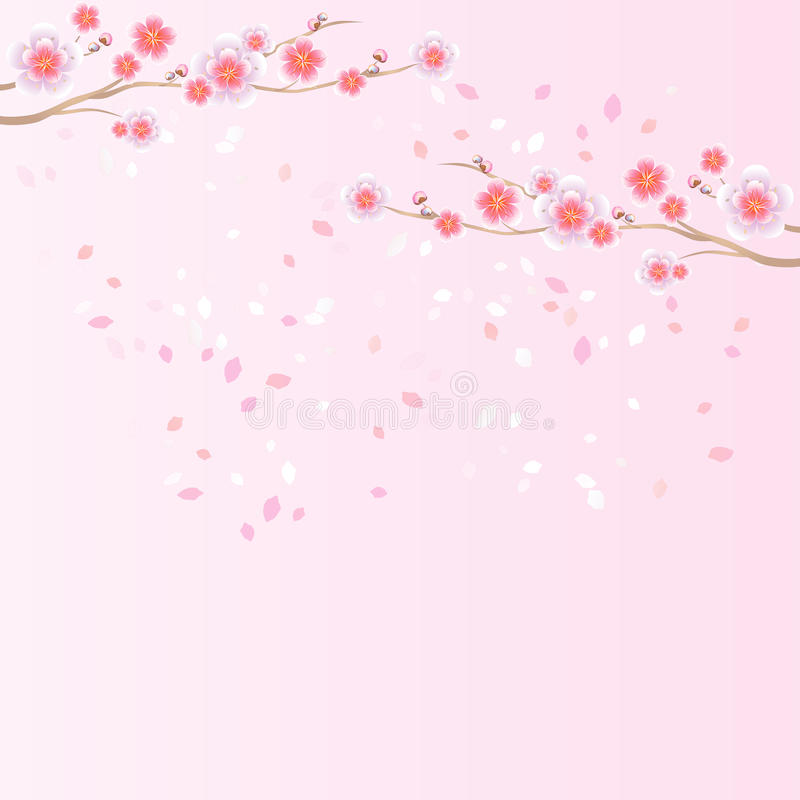 Ветви летать Сакуры и лепестков изолированный на свете - розовой предпосылке цветки Apple-вала Цветение вишни Вектор EPS 10, cmyk иллюстрация вектора