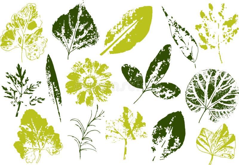 Ветви и листья вектора рука вычерченных элементов флористическая Винтажная monochrome ботаническая иллюстрация Штемпель черных ли бесплатная иллюстрация