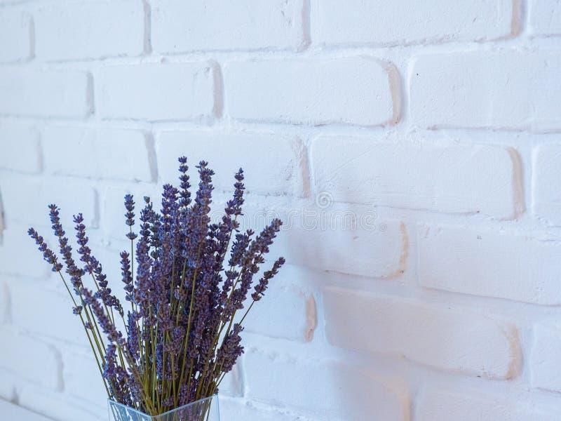 Ветви лаванды в стеклянной вазе против белой кирпичной стены домашнее оформление в минималистичном стиле пурпурово стоковое фото rf