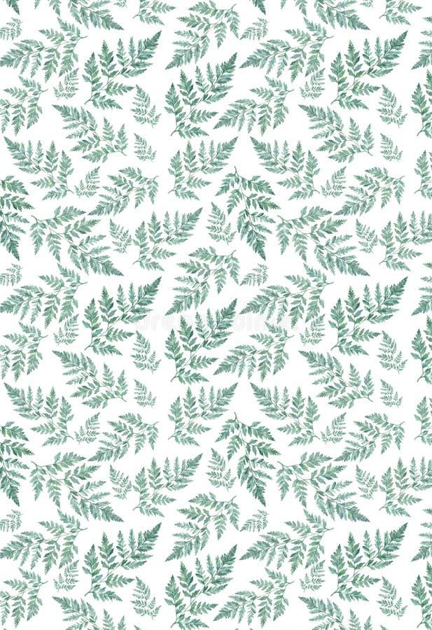 Ветви листвы цветочного узора акварели естественные, зеленые листья, травы, иллюстрация акварели руки тропического завода вычерче иллюстрация штока