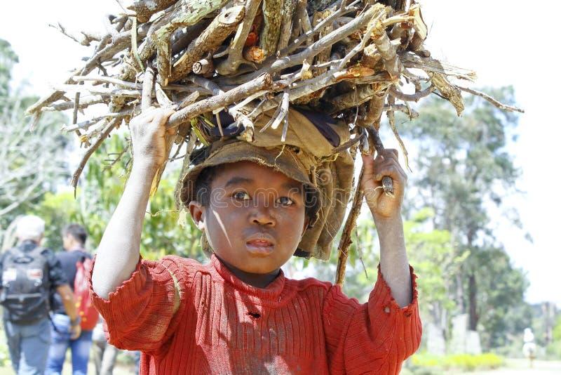 Ветви нося плохого малагасийского мальчика на его голове стоковое изображение rf