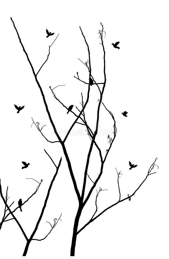 Ветви с птицами иллюстрация штока